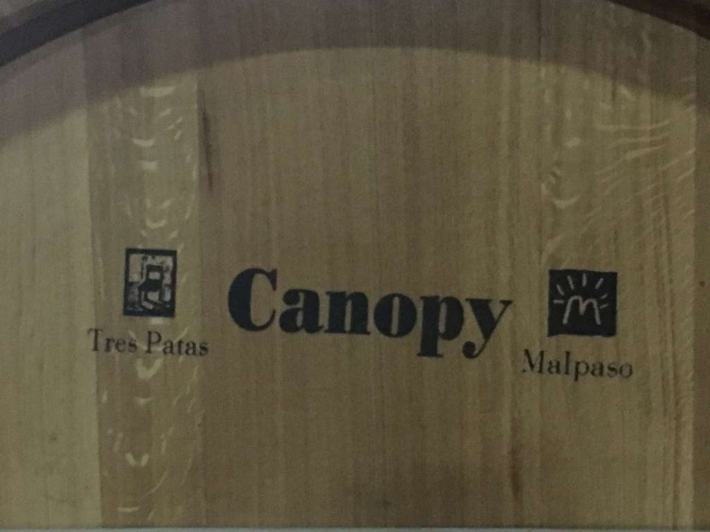 Barrica Canopy