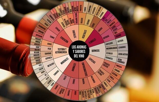Rueda de aromas